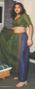 beautiful indian teacher stripping saree nude